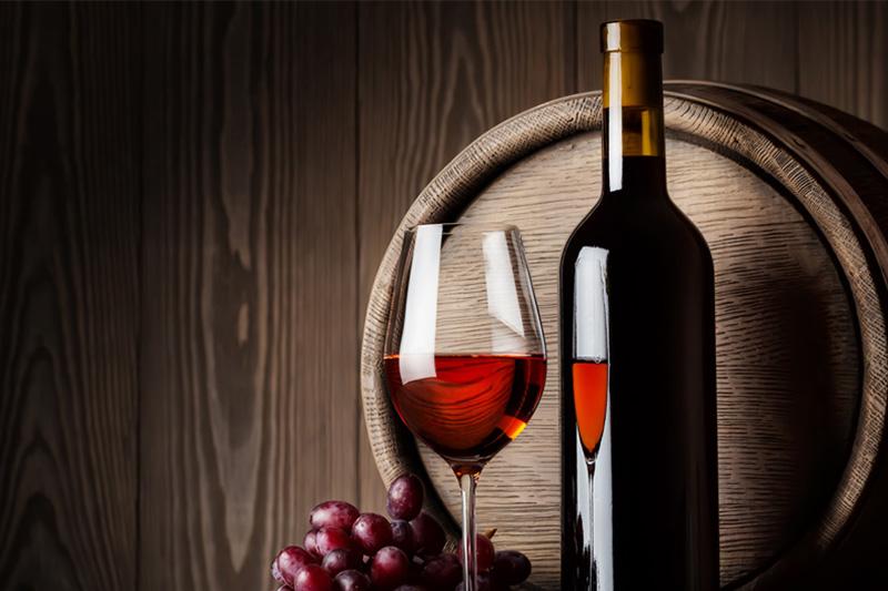 Férias em vinhas do Alentejo